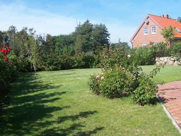 Ferienhaus Schoenberg-Brasilien: Ostsee-Ferienhaus Ostseetraum mit Kamin