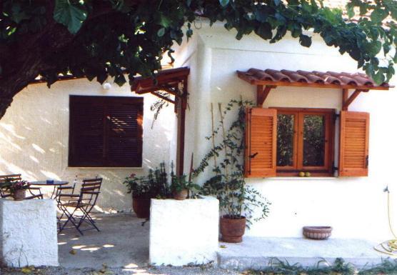 Ferienhaus Neusiedl am See: Olivengarten