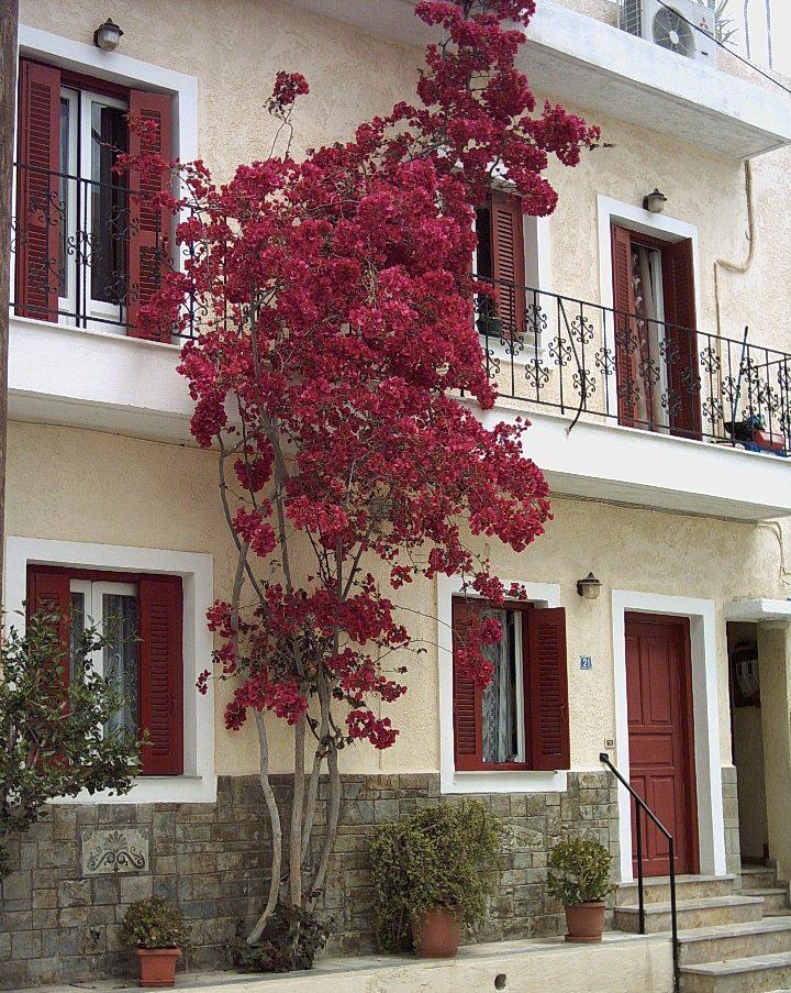 Ferienwohnung Ierapetra: Private Ferienwohnung