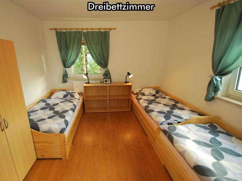 Ferienhaus Mitterfirmiansreut (Bayerischer Wald - Skizentrum Mitterdorf): Appartementhaus Almberg * * *